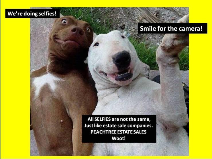 selfies dogs